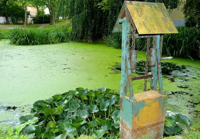 Schlosspark Burgk