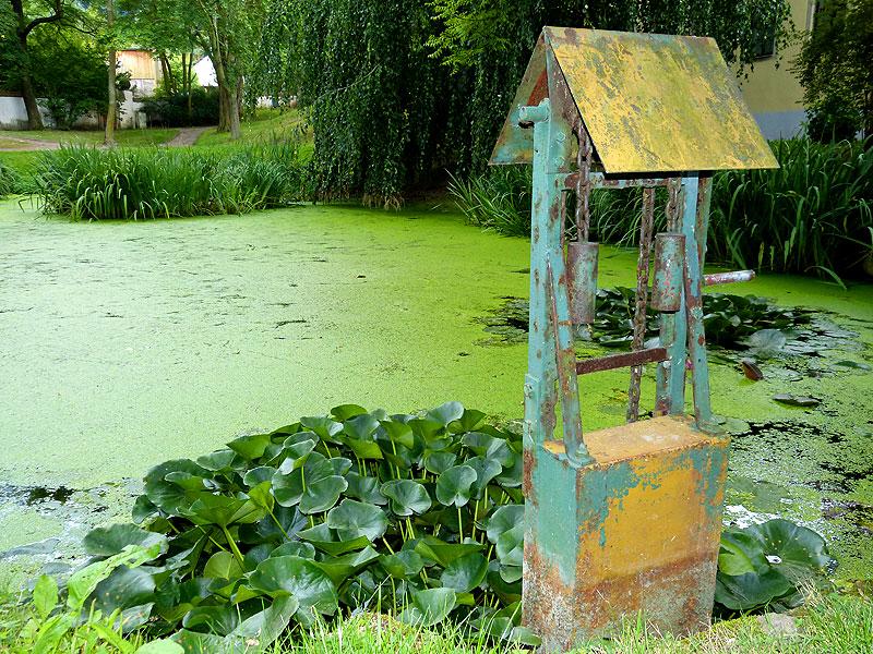 Biotop im Schlossgarten Burgk