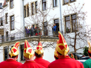 Freital Karneval Bild 21