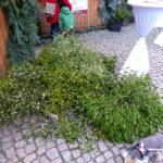schlossweihnacht-burgk-freital-42