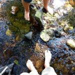 Bilder aus dem Tharandter Wald - Bild 4