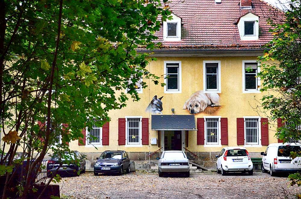 Tierheim Freital Haupteingang