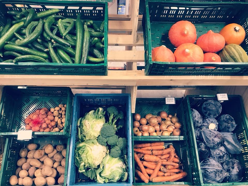 Lokales Gemüse aus Freital