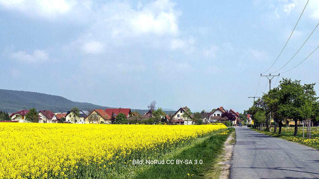 Birkigt (Ortsteil Freital)