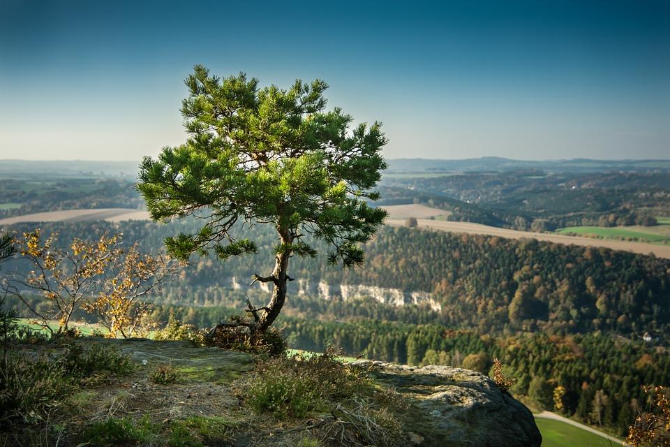 Aussichtspunkt Sächsischen Schweiz