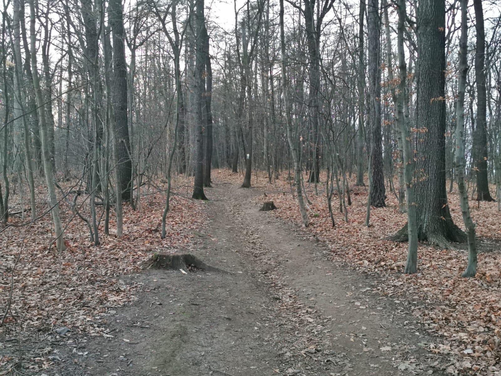 Freital-Kleinnauendorf-Bild-15
