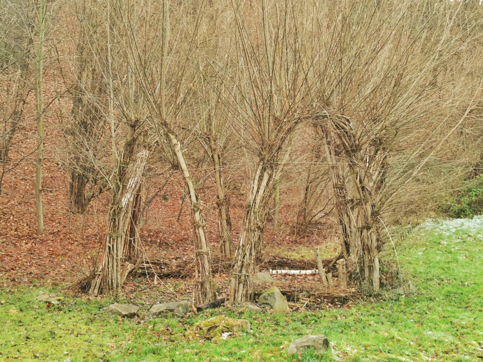 Freital-Kleinnauendorf-Bild-5